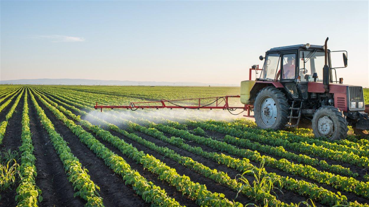 150917 pb1i6 pesticides agriculture sn1250